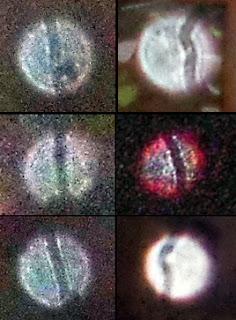 orb pattern