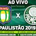 Jogo São Caetano x Palmeiras Ao Vivo 27/01/2019