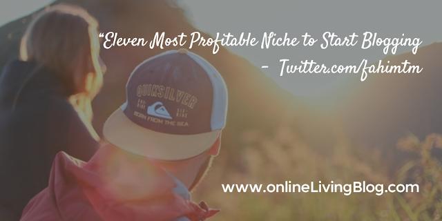 11 Most Profitable Niche to Start Blogging