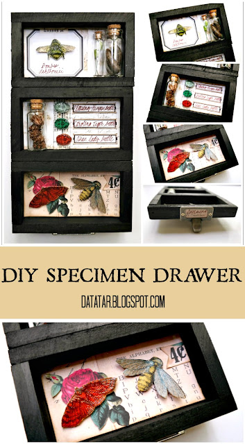 DIY Specimen Tray Tutorial by Dana Tatar for Canvas Corp Brands