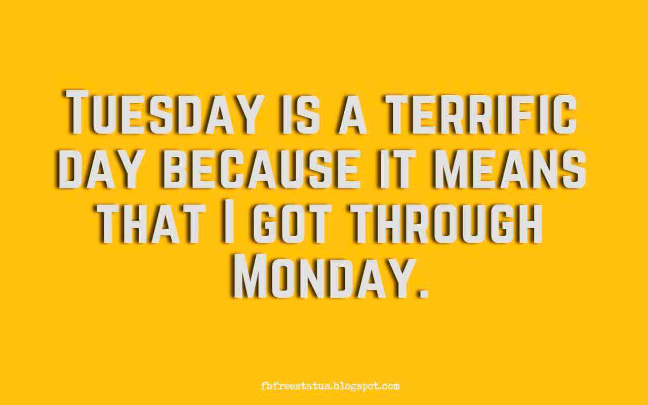Tuesday is a terrific day because it means that I got through Monday.