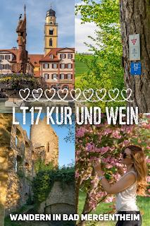 LT 17 Kur und Wein  Wandern in Bad Mergentheim  Liebliches Taubertal Weinlehrpfad Markelsheim  Wanderung um Bad Mergentheim 21
