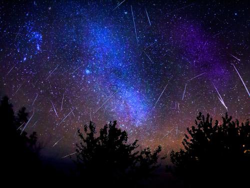 Звездопад в ночь с 12 на 13 августа: как исполнить желание по Знаку Зодиака