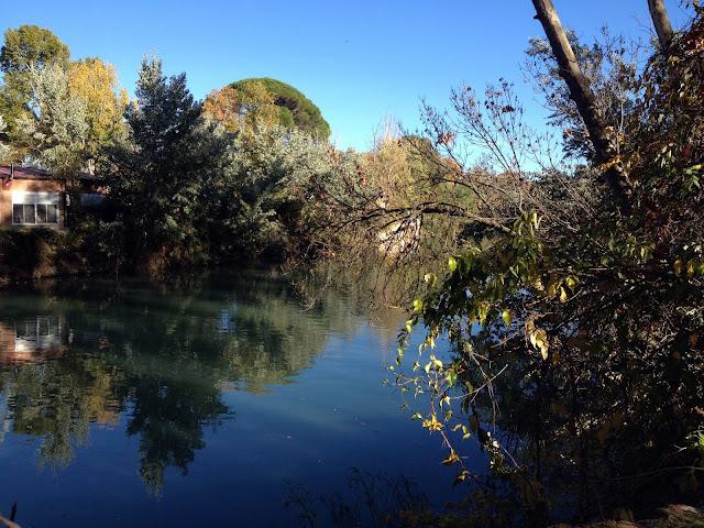 navegando por los jardines de Aranjuez