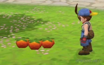 Very Berry Harvest Moon Hero of Leaf Valley