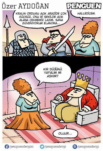 kır düğünü karikatür