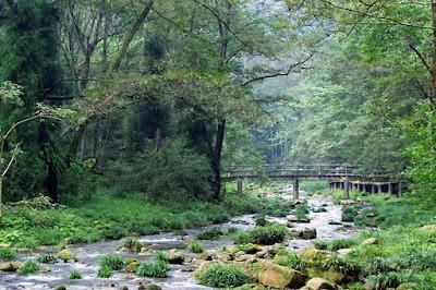 ลำธารแส้ทอง (Golden Whip Stream) @ www.topchinatravel.com