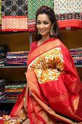 Rashmi Thakur Inaugurates Pochampally IKAT Art mela 2016-thumbnail-7