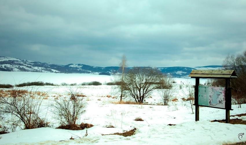 Кулинарен туризъм или за ден до Власинското езеро в Сърбия