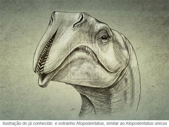 Atopodentatus - Ilustração