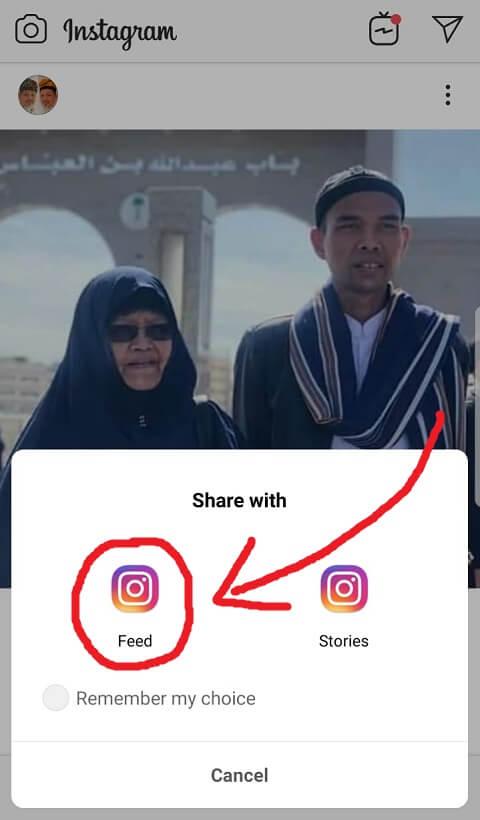 Pilih Feed Instagram