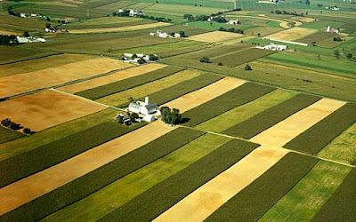 Metode Vegetatif dan Mekanik Konservasi Tanah