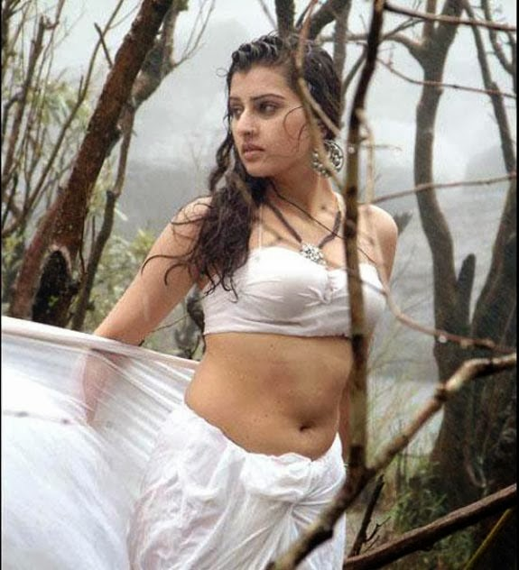 South Indian Actress Hot Navel HD Pictures