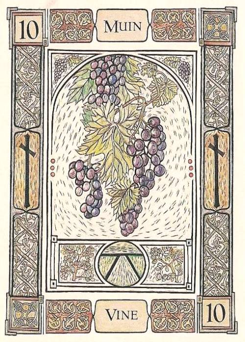 Celtic Tarot: Tarot Notes: Cards And Quotes: Vine