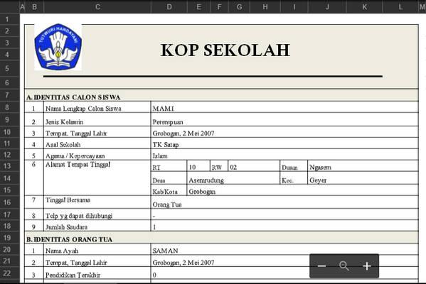 Aplikasi Rekap Siswa PPDB Format Excel