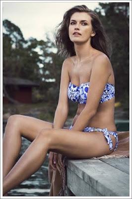 http://www.royal-blue.jp/brand/fantasie_swimwear/aveiro.html