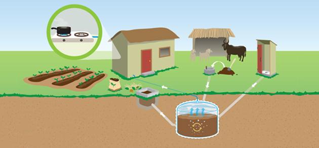 Cara Proses Pengolahan Minyak Bumi