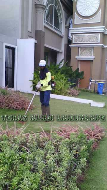 jasa perawatan taman rumah pribadi tangerang