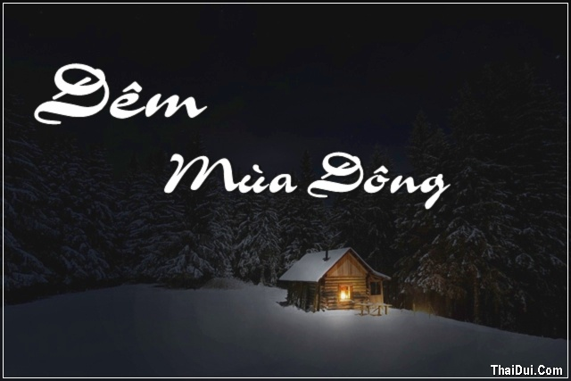 Những bài thơ tình Đêm Mùa Đông buồn hay nhất