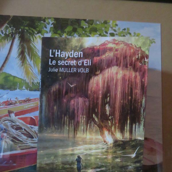 L'Hayden, tome 1 : Le secret d'Eli de Julie Muller Volb