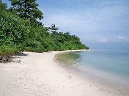 pulau panjang kepri