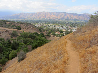 View north from Alosta Canyon South Fork Trail, South Hills Wilderness Park, Glendora
