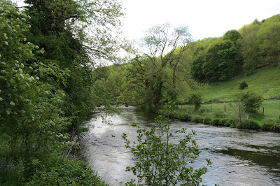 Fast flowing river with foliage and trees on the banks.