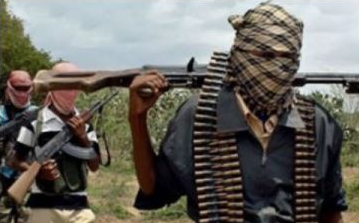 Boko Haram Members Invade Adamawa Village At Night, Kill Many, Burn Down Houses