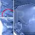 Pasangan Diserang Buaya Ketika Mandi Di Kolam Renang Hotel