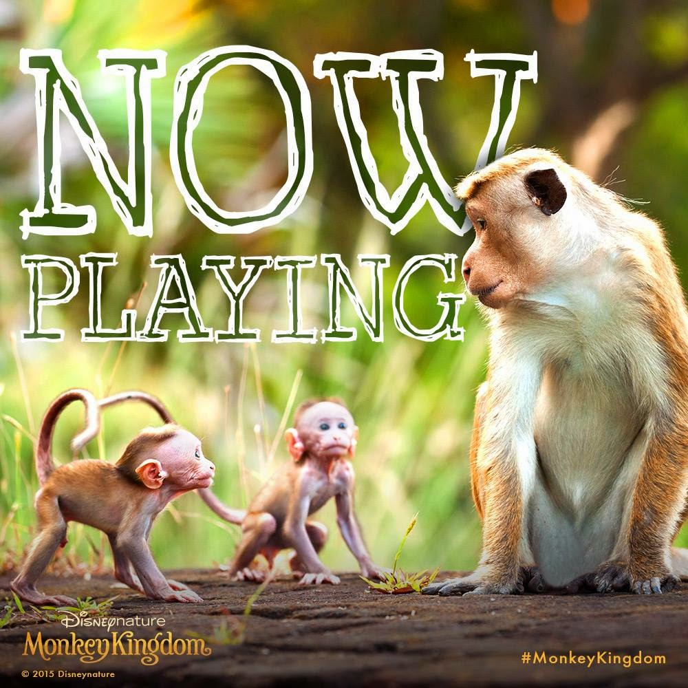 monkey, Monkey Kingdom, Disney, Disney Nature, nature, Tina Fey, theater, movie review, movie trailer, review, Conservation International, family