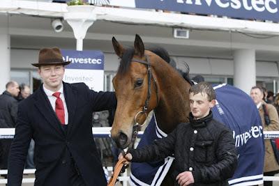 Scott Dixon, horse trainer