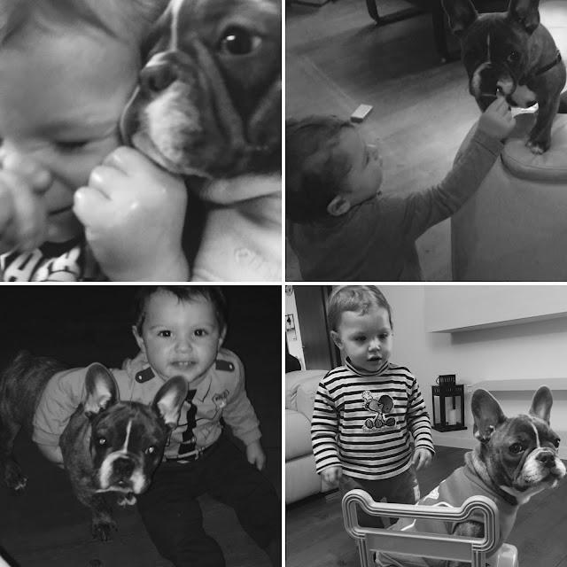 Cuccioli e bambini