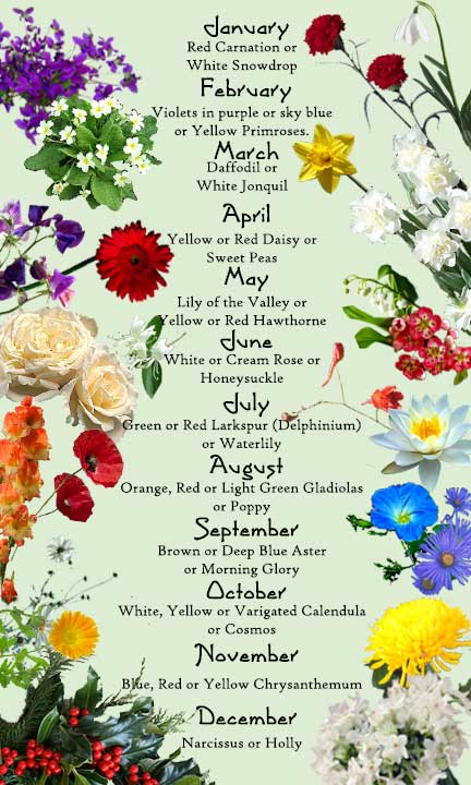 Flowers of the Month | Good Witches Magickal Flowers And Herbs