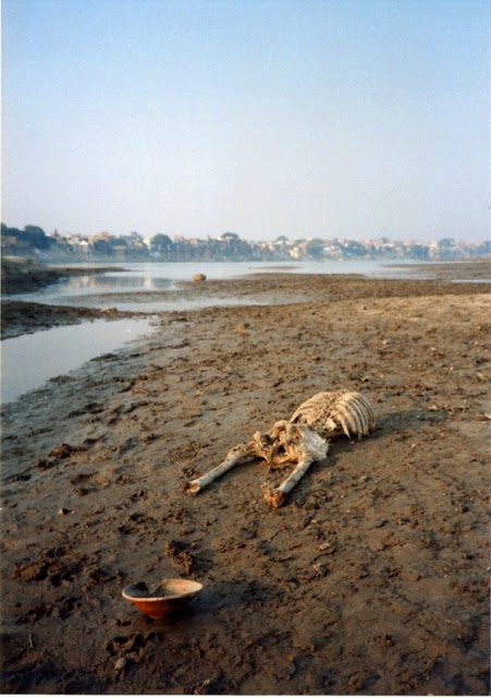 Kumpulan Foto Potret Betapa Horor dan Kotornya Sungai Gangga yang Disucikan