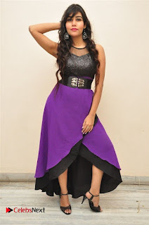 Telugu Actress Rachana Smith Stills at Money is Honey Audio Release  0042.jpg