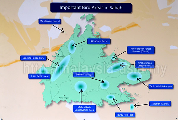 Sabah Important Birding Areas
