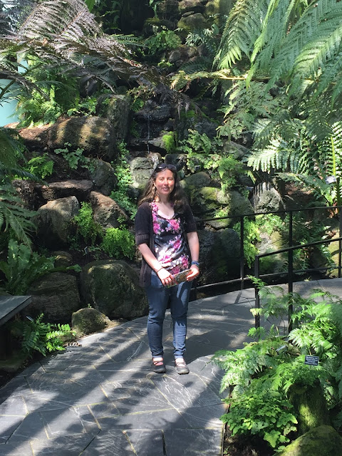 Walking through the lush greenery at Como Conservatory