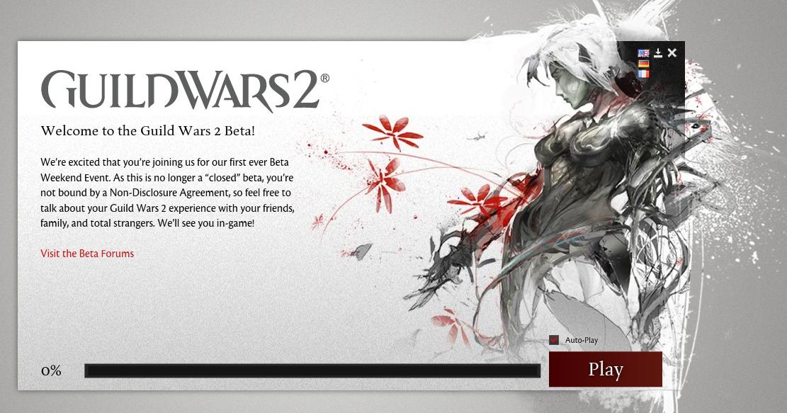 Guild Wars 2 launcher