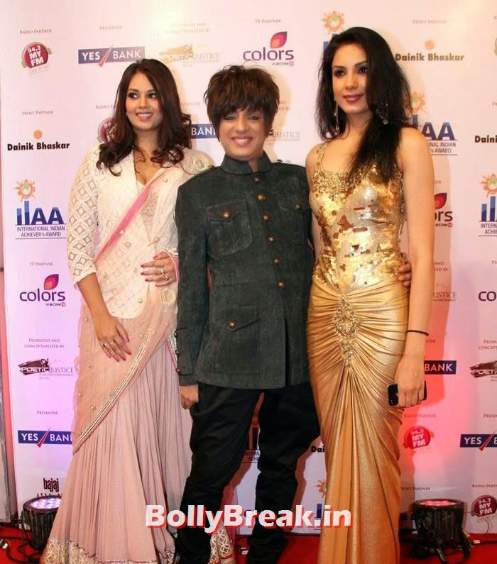Rohit Verma, International Indian Achiever's Awards Photo Gallery