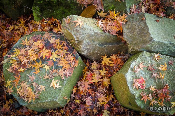 rochers hexagonaux et feuilles d'erables rouges au sol