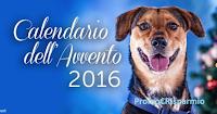 Logo Calendario dell'Avvento Innovet: regala 5.000 pasti a cani e gatti + adozioni