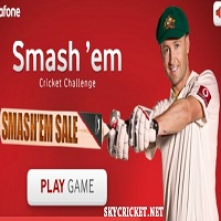 Play Smash-em Cricket Challenge Game