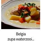 https://www.mniam-mniam.com.pl/2011/08/waterzooi.html