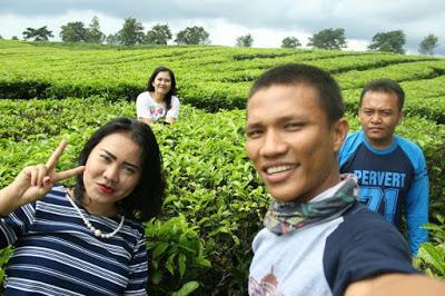 Destinasi Wisata di Provinsi Sumatera Utara yang berdekatan dengan Kota Pematangsiantar adalah Kebun Teh Sidamanik