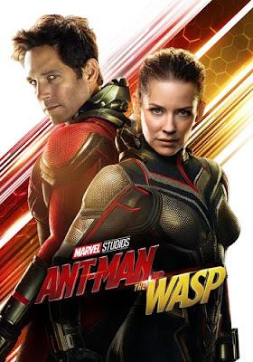 Ant-Man and the Wasp [2019] [DVD] [R1] [NTSC] [Latino]
