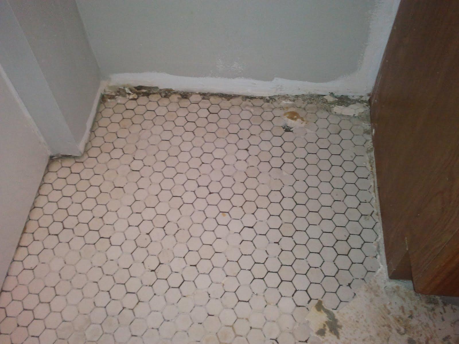 Penny Floor Template. cheryls penny floor. uncategorized