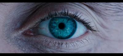 El ojo de un visionario... o de un demente.