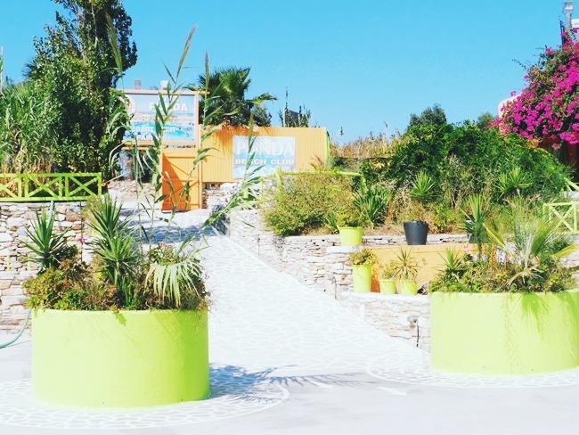 Viva Punda summer beach club photos