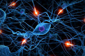 Changing your brain chemistry without medication