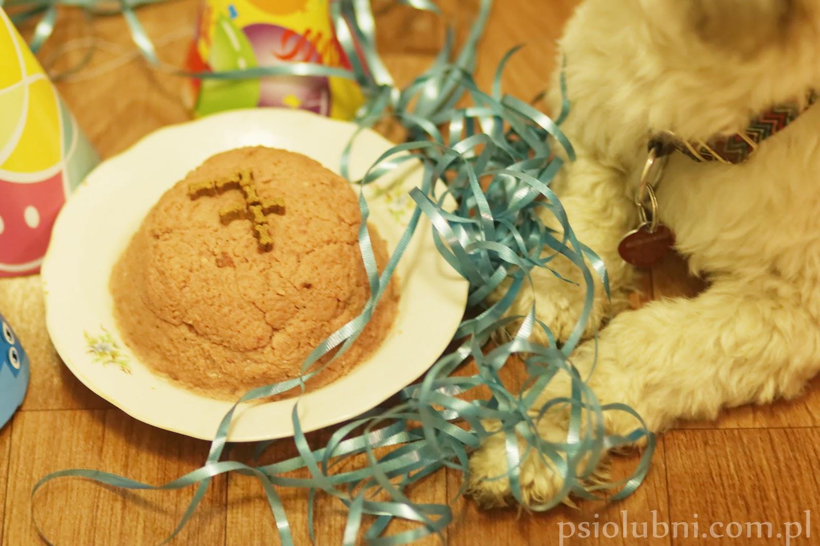 tort, wypieki, słodkości, urodziny, ciasteczka, pierniczki, ciasta, kuchnia, tort dla psa, ciasteczka dla psa, przysmaki dla psa, urodziny psa, psy rasowe, rasy psów, pudel, pekińczyk, blog o psach, diy, zrób to sam, jesień,